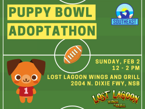 Puppy Bowl 2020 @ Lost Lagoon Wings and Grill